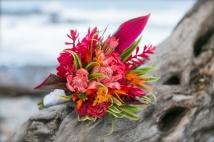 Elopement Wedding in Montezuma Costa Rica by John Williamson Photography
