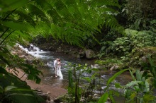 John Williamson Destination Wedding Photography at La Paz Waterfall Garden